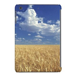 USA, Washington State, Colfax. Ripe wheat iPad Mini Retina Cases