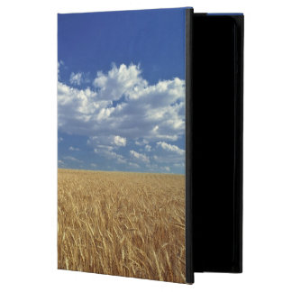 USA, Washington State, Colfax. Ripe wheat iPad Air Cases