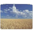 USA, Washington State, Colfax. Ripe wheat iPad Smart Cover