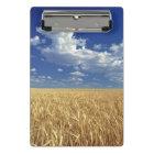 USA, Washington State, Colfax. Ripe wheat Mini Clipboard