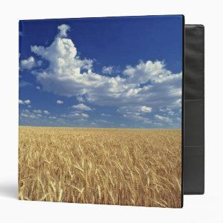 USA, Washington State, Colfax. Ripe wheat Vinyl Binder