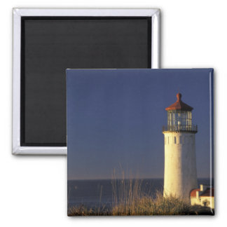 USA, Washington State, Fort Canby State Park. 2 Inch Square Magnet