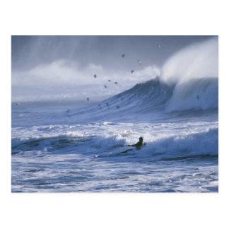 USA, Washington State, La Push. Man kayak Postcard