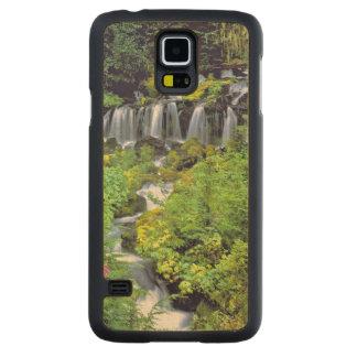 USA, Washington State, Mt Adams Wilderness. Twin Carved Maple Galaxy S5 Slim Case
