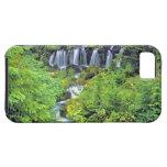 USA, Washington State, Mt Adams Wilderness. Twin iPhone 5 Cases