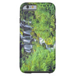 USA, Washington State, Mt Adams Wilderness. Twin Tough iPhone 6 Case