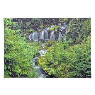 USA, Washington State, Mt Adams Wilderness. Twin Cloth Place Mat