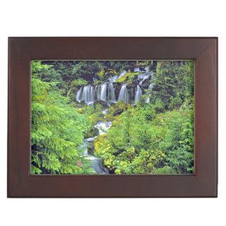 USA, Washington State, Mt Adams Wilderness. Twin Memory Box