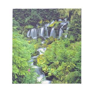 USA, Washington State, Mt Adams Wilderness. Twin Memo Pads