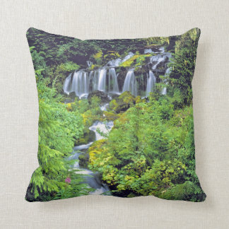 USA, Washington State, Mt Adams Wilderness. Twin Pillow