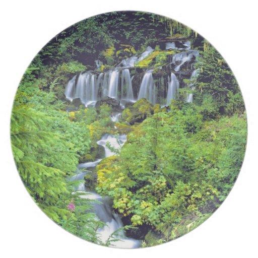 USA, Washington State, Mt Adams Wilderness. Twin Plate