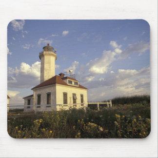 USA, Washington State, near Port Townsend. Port Mouse Pad