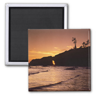 USA, Washington State, Olympic National Park. 2 2 Inch Square Magnet