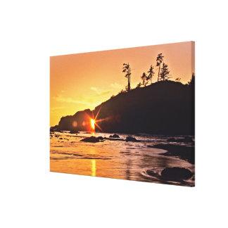 USA, Washington State, Olympic National Park. 2 Canvas Print