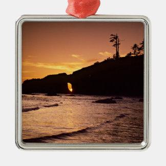 USA, Washington State, Olympic National Park. 2 Metal Ornament