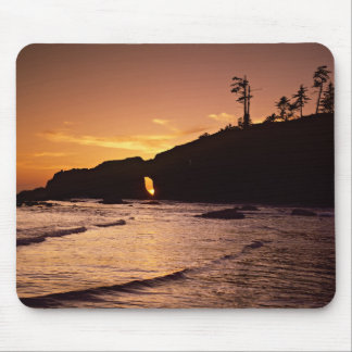 USA, Washington State, Olympic National Park. 2 Mouse Pad