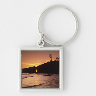 USA, Washington State, Olympic National Park. 2 Silver-Colored Square Keychain