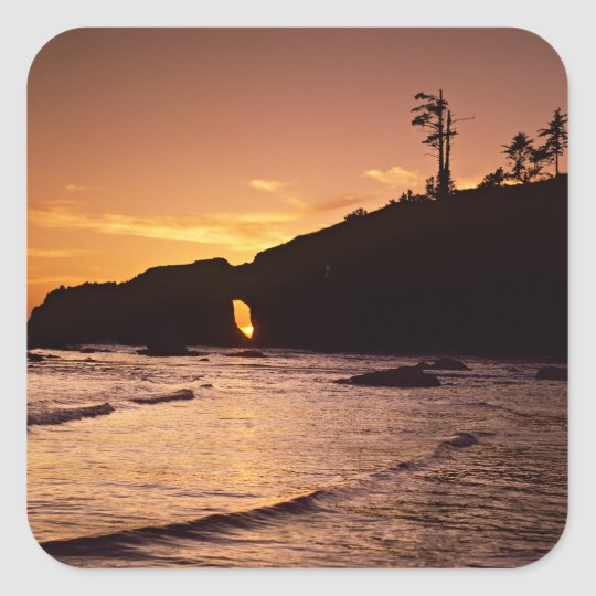 USA, Washington State, Olympic National Park. 2 Square Sticker