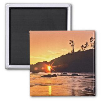 USA, Washington State, Olympic National Park. 3 Magnets