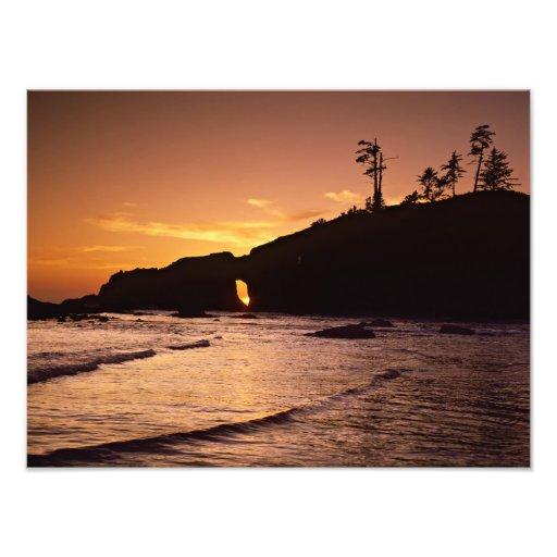 USA, Washington State, Olympic National Park. 3 Photo Print