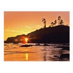 USA, Washington State, Olympic National Park. 3 Postcard