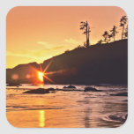 USA, Washington State, Olympic National Park. 3 Square Sticker
