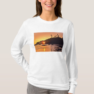 USA, Washington State, Olympic National Park. 3 T-Shirt