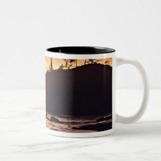 USA, Washington State, Olympic National Park. 3 Two-Tone Coffee Mug