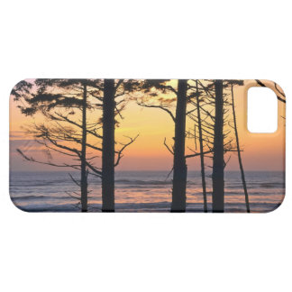 USA, Washington State, Olympic NP. Delicate iPhone SE/5/5s Case