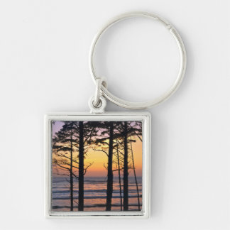 USA, Washington State, Olympic NP. Delicate Silver-Colored Square Keychain