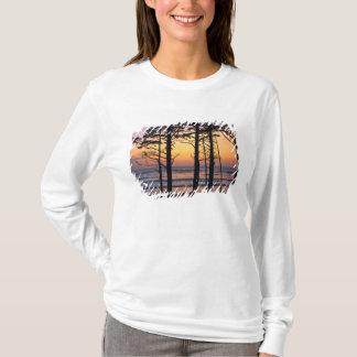 USA, Washington State, Olympic NP. Delicate T-Shirt