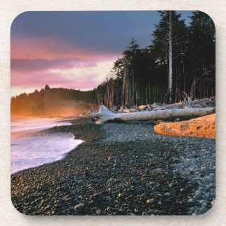 USA, Washington State, Olympic NP. Waves lap the Coaster