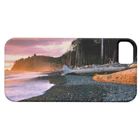 USA, Washington State, Olympic NP. Waves lap the iPhone SE/5/5s Case