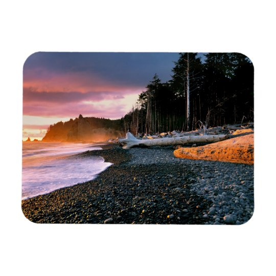 USA, Washington State, Olympic NP. Waves lap the Magnet