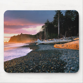 USA, Washington State, Olympic NP. Waves lap the Mouse Pad