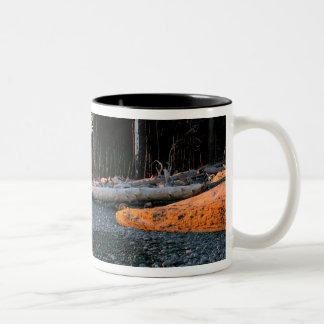 USA, Washington State, Olympic NP. Waves lap the Two-Tone Coffee Mug