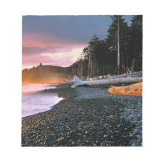 USA, Washington State, Olympic NP. Waves lap the Notepad