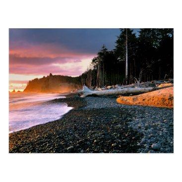 Christmas Themed USA, Washington State, Olympic NP. Waves lap the Postcard