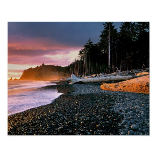 USA, Washington State, Olympic NP. Waves lap the Poster