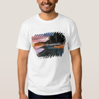USA, Washington State, Olympic NP. Waves lap the T-shirt