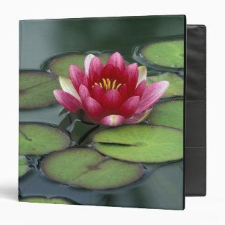 USA, Washington State, Seattle. Water lily and Binders