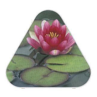USA, Washington State, Seattle. Water lily and Bluetooth Speaker