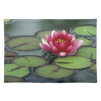 USA, Washington State, Seattle. Water lily and Cloth Placemat