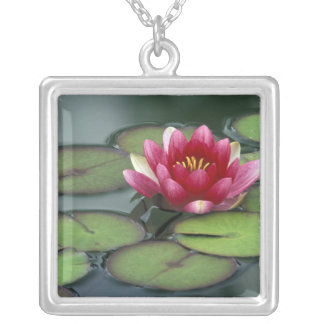 USA, Washington State, Seattle. Water lily and Silver Plated Necklace