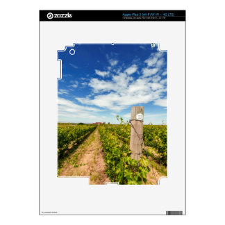 USA, Washington, Walla Walla. Cabernet Sauvignon iPad 3 Skin