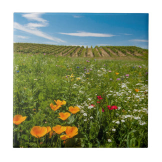 USA, Washington, Walla Walla. Wildflowers Small Square Tile
