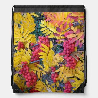 USA, Washington, Western Mountain Ash, Okanogan Drawstring Bags