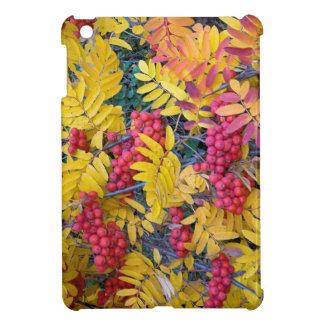 USA, Washington, Western Mountain Ash, Okanogan iPad Mini Cases