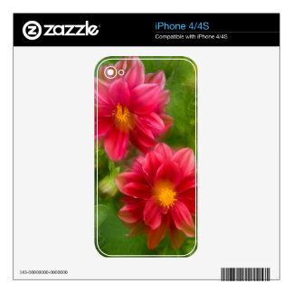 USA, Washington, Whidbey Island. Dahlia montage Decals For The iPhone 4S