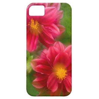 USA, Washington, Whidbey Island. Dahlia montage iPhone SE/5/5s Case